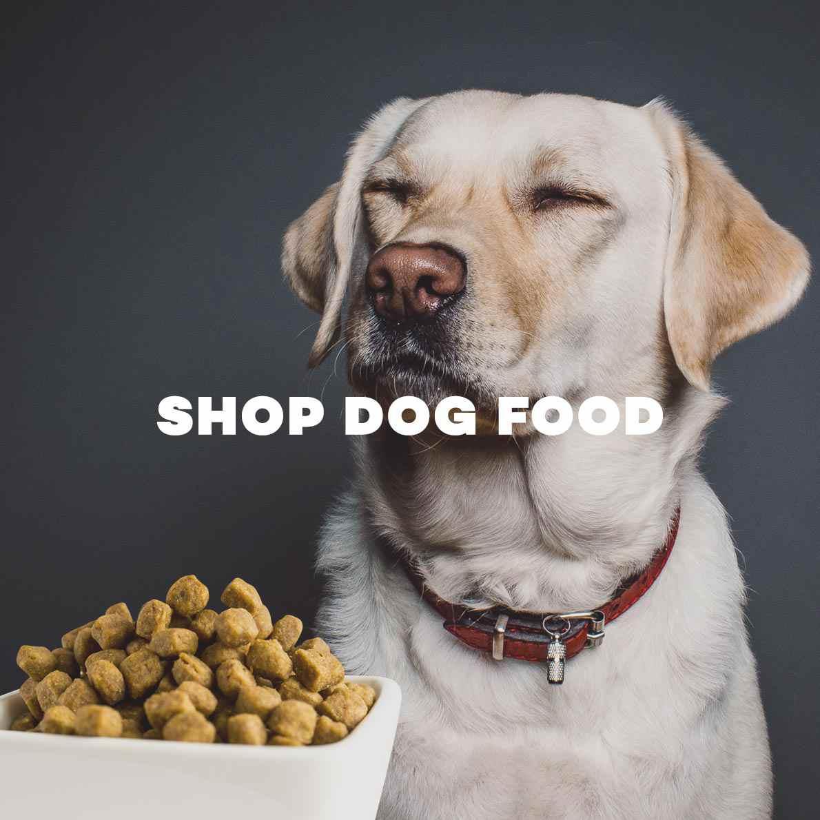 Crib bumper for sale philippines - Dog Crib For Sale Philippines Pet Shop Online Buy Dog Food Pet Supplies Leash Feeding
