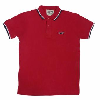 Hollister-1601 Men's Polo Shirt(Red)