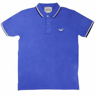 Hollister-1601 Men's Polo Shirt(Royal Blue)