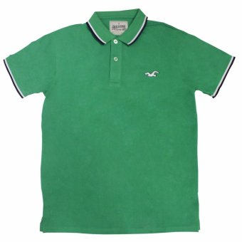Hollister-1601 Men's Polo Shirt(Sea Green)