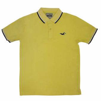 Hollister-1601 Men's Polo Shirt(Yellow)