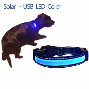 LED pet dog collar collar flash light solar charging dog collarluminous collar - intl