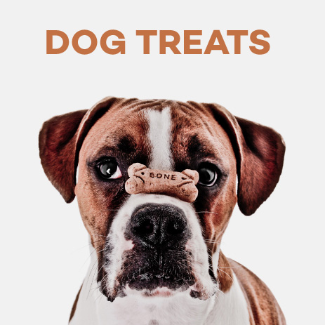 Pedigree Dog Food For Puppy Price In Philippines