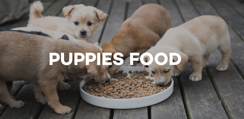Dog Food For Sale Puppy Food Prices Amp Brands In