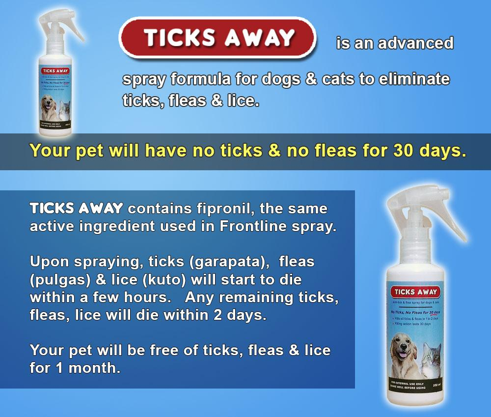 ticks away info