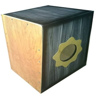 Beat Box Cajon with Pickup