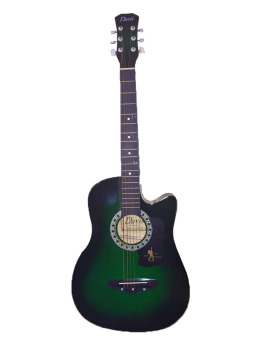 Davis JG-38 Acoustic Guitar (Green) Price Philippines