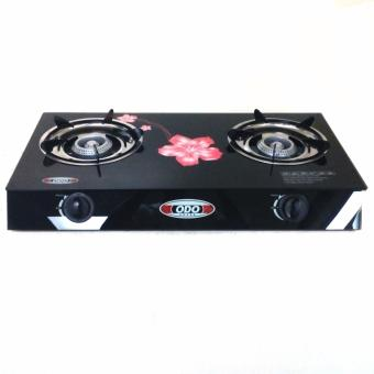 Glass Top Double Burner Gas Stove