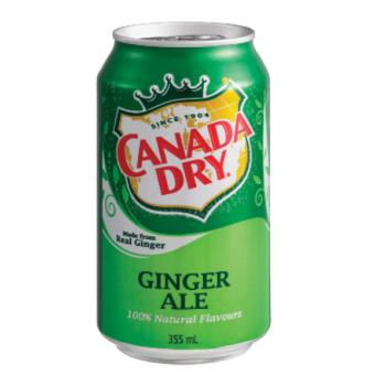 Harga Canada Dry Ginger Ale 330ml in can