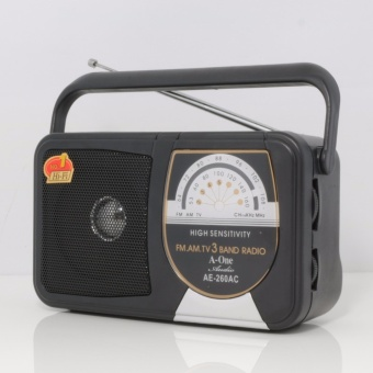 A-One AE-260 Portable Multi Function FM/AM/TV Radio (Black)