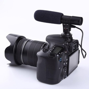 Cocotina Sidande Mic-01 3.5mm Recording Microphone Mic for DSLR Camera DV Video Camcorder - intl