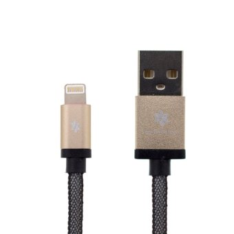 Earldom 1M Safe & Speed Data MicroUSB Cable for Apple (Gold)