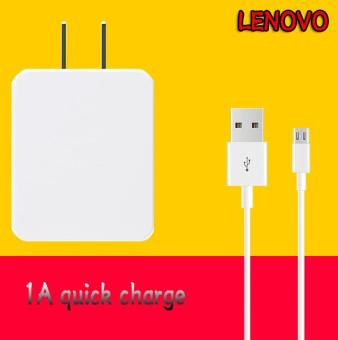 LENOVO-1A Quick Charger For Smart Phone Whit USB Cable Price Philippines