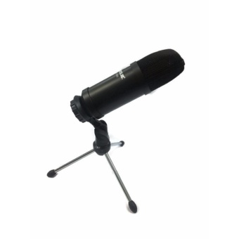 MICKLE MM-US100 Professional USB Studio Microphone (Black)