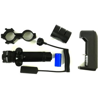 Professional and Accurate Green Laser Sight Price Philippines