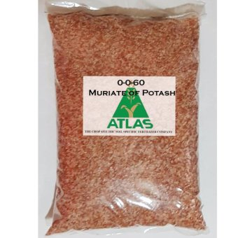 Atlas 1Kg Muriate of Potash 0-0-60