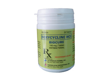 Biocure Doxycycline HCI Antibacterial Cat Dog Tablets Price Philippines