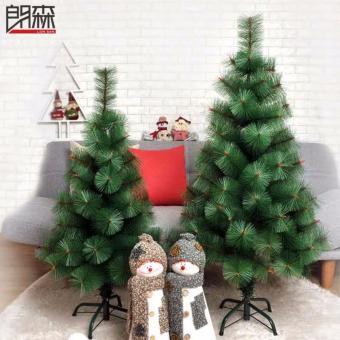christmas tree pine 7ft price philippines - Christmas Tree Prices