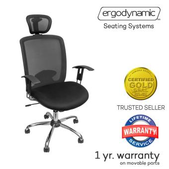 Ergodynamic EHC-129 Heavy Duty Mesh Office Chair (Black)