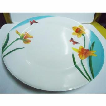 Homex Dinner Plate Set No.1010 6pcs Price Philippines
