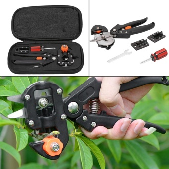 Stainless Steel Professional Tree Pruning Shears Scissor Grafting Cutting Tool - intl Price Philippines