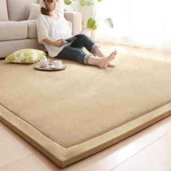 Harga BUYINCOINS Comfort and Smooth Carpet - intl