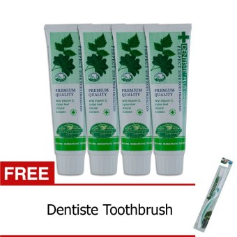 Dentiste Nighttime Toothpaste 100g Set of 4 Get 1 FREE Toothbrush