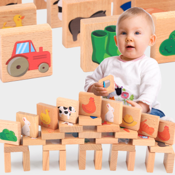 Farm paired educational Domino toys