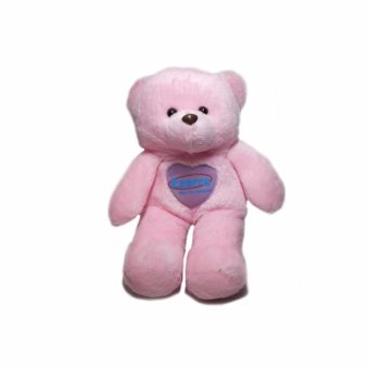 Teddy Bear (Pink) Price Philippines