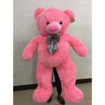 5ft Light Pink Teddy Bear Price Philippines