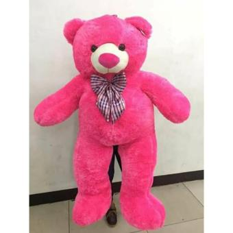 5ft Hot Pink Teddy Bear Price Philippines