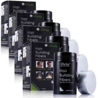 DEXE Hair Loss Concealer / Hair Thickener / Hair Building Fibers Set of 4