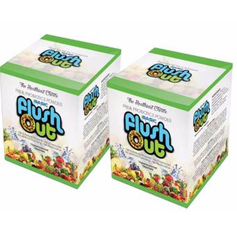 iBasic World Flush Out Set of 2 Price Philippines