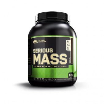 Optimum Nutrition Serious Mass 6 Pounds (Chocolate) Price Philippines