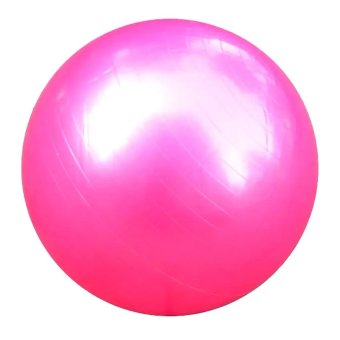 Harga Exercise Fitness Aerobic Yoga Ball (Pink)