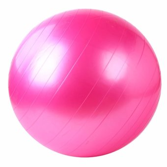 Harga Exercise Fitness Aerobic Ball 75cm (Pink)