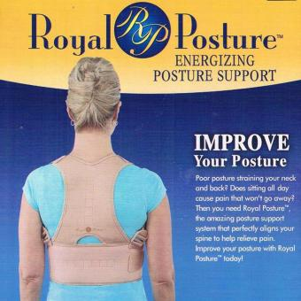 Harga Royal Posture Back Support