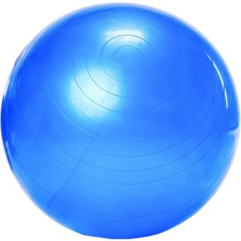 Harga Exercise Fitness Aerobic Yoga Ball (Blue)