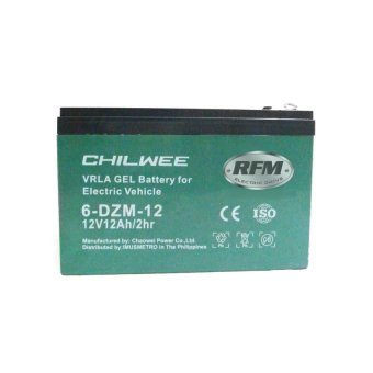 RFM's Ebikes ecobike electric bike 12v12ah gel type VRLA chilwee battery (green) Price Philippines
