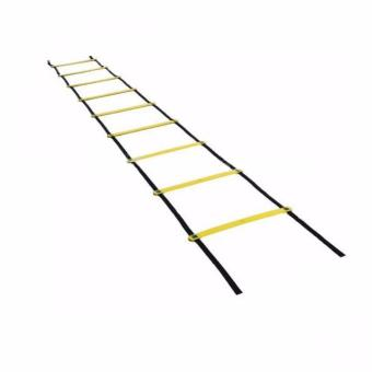 10 Meters Jump Ladder (Yellow) Price Philippines