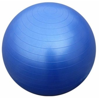 J&C Gym Ball Exercise(Blue) Price Philippines