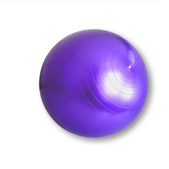 King Lion Gym Ball (Purple) Price Philippines