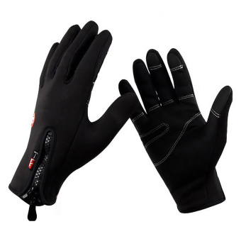 PAlight Outdoor Sports Windproof Cycling Hiking Camping ThermalTouch Screen Glove (L)