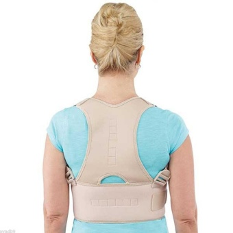 Royal Posture Back Support (Medium) Price Philippines