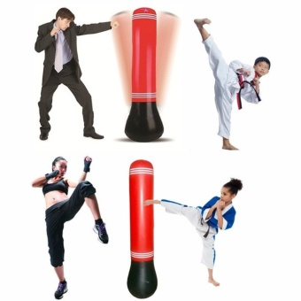 Exercise Punch Ball Boxing. Source · Speed Boxing Training Inflatable Tower Bag .