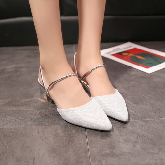 Women's Korean-style Pointed Toe Chunky Heel Sandal (Silver)