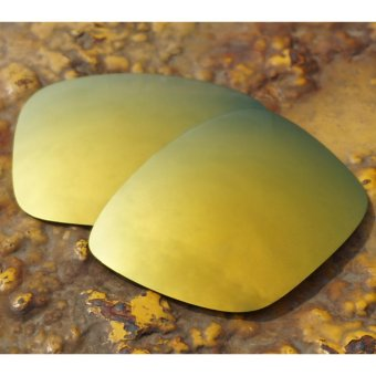 BOTT Replacement Lenses for Holbrook Sunglasses Polarized 24KGolden - intl Price Philippines