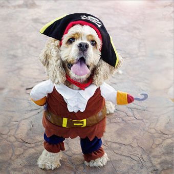 Hanyu Halloween Pirate Style Dog Costumes With Skull Hat Funny Dog Clothing S Multicolor - intl