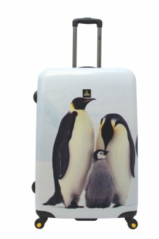 "National Geographic Nature of Love 4W 27"" Luggage (Penguin) Price Philippines"