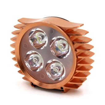 Harga Motor Craze Universal Motorcycle 4 LED Light (R.Gold)